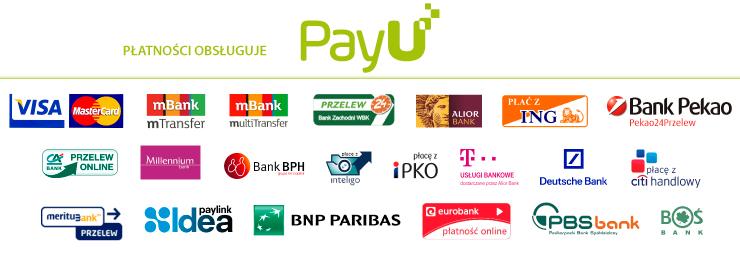 """Znalezione obrazy dla zapytania: pay u"""""""